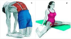 flexibility program